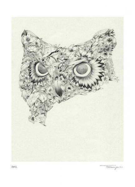 Owl Leinwandbild