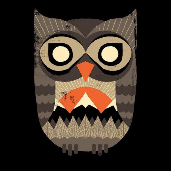 Owl Sunrise Leinwandbild