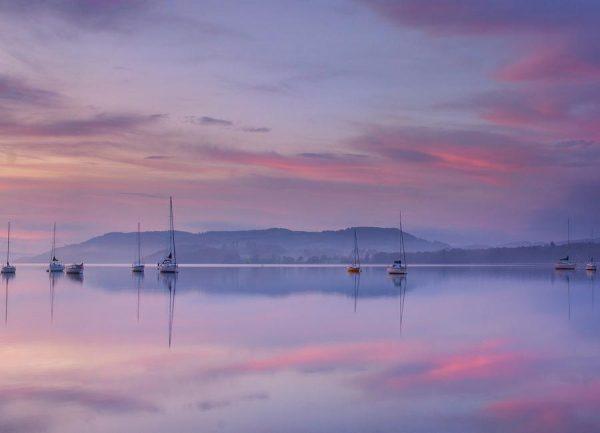 Pink Morning Margarita Chernilova Leinwandbild