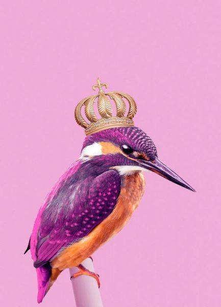 Queen Fisher Leinwandbild