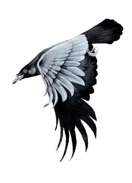 Raven II Leinwandbild