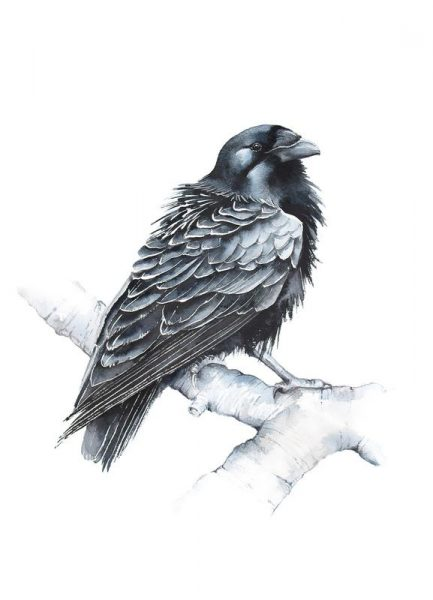 Raven Leinwandbild
