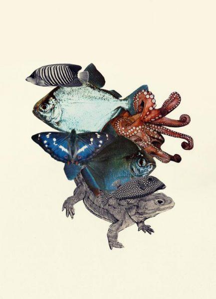 Reptiles and Sea Creatures Leinwandbild