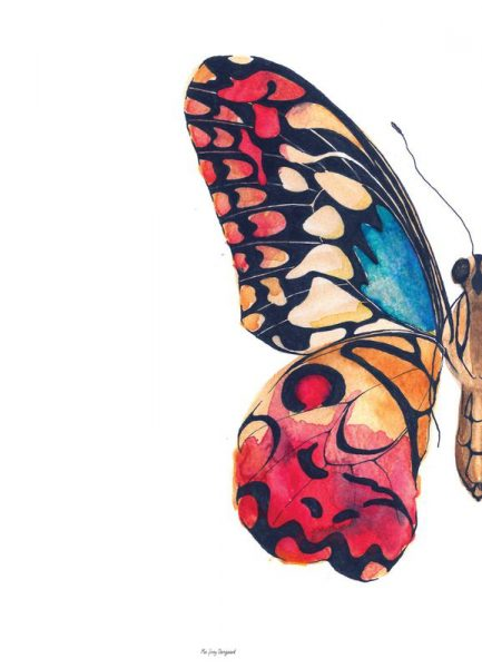 Sommerfugl 1 Leinwandbild