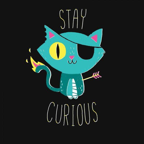 Stay Curious Leinwandbild