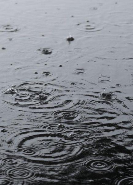 Summer Rain Leinwandbild