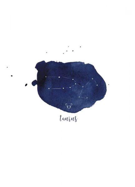 Taurus Leinwandbild