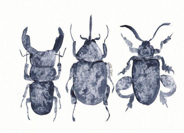 The Beetle Show Leinwandbild