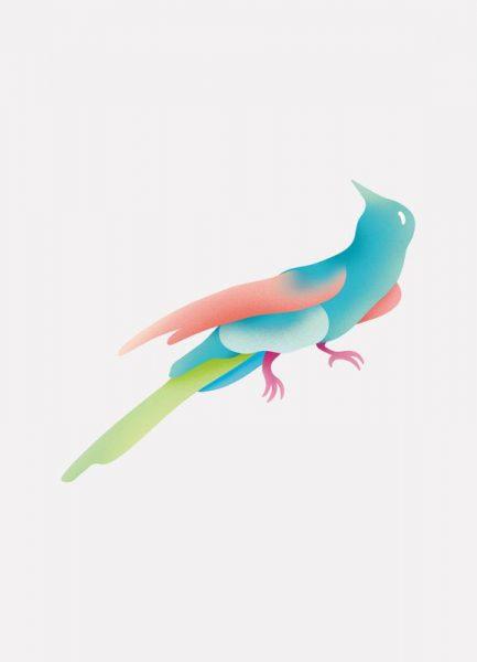 Tropical Blue Bird Leinwandbild