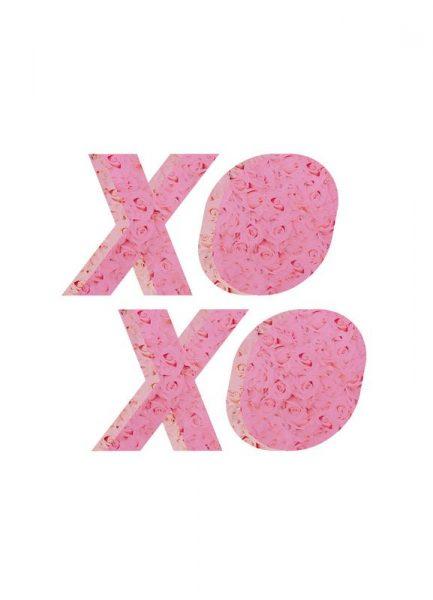XO Roses Leinwandbild